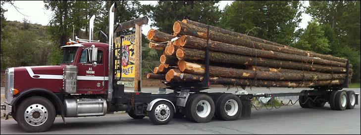 More Logging Methow Grist